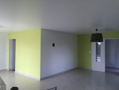 plafond tendu satiné avec suspensions
