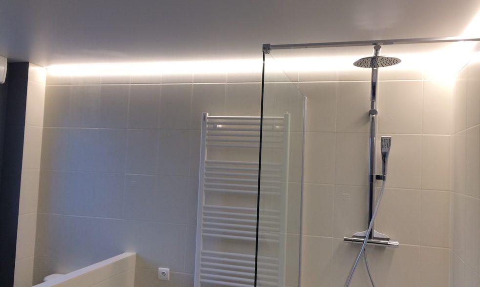 Ralisations Pour Particuliers Plafond  Mur Tendu  Francis Collin
